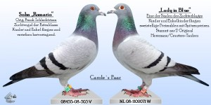 Caroles Paar