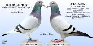 Catilins Paar